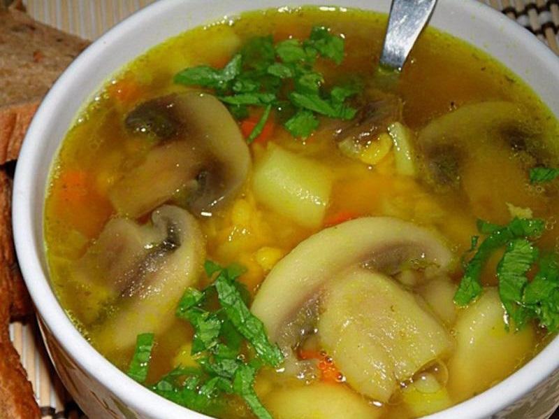 Вкусные домашние супы: ароматные блюда для обеда
