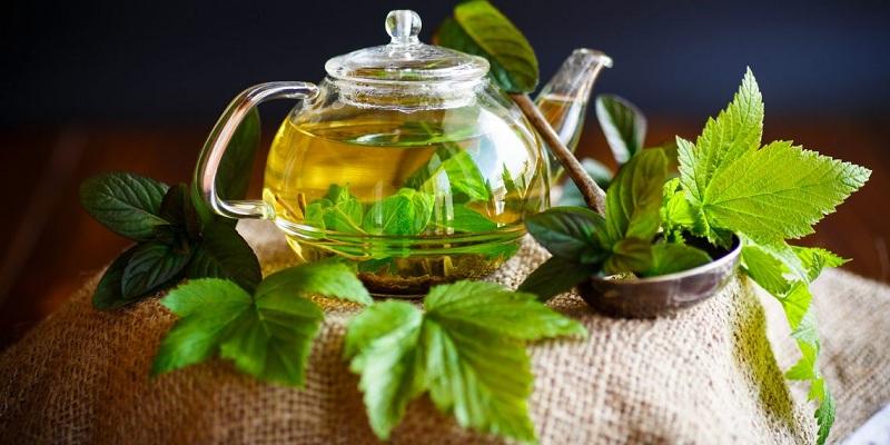 Чай из листьев смородины: витамины натурального происхождения