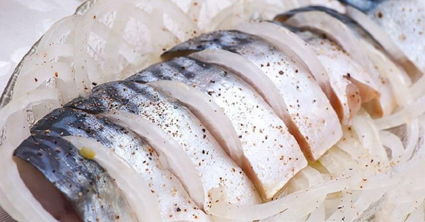 Слабосоленая скумбрия за 2 часа: море пользы и вкуса в одной рыбке
